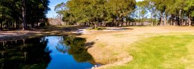 Sea Trail Fairway Lot- Egret Drive